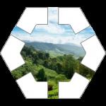 Hills Hex Tile