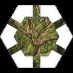 Mystic Tree Hex Tile