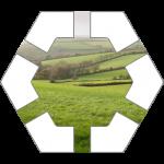 Plains Hex Tile